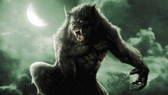 Wolfman22