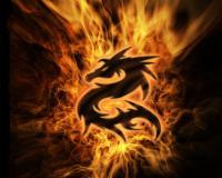 DragonOrigin666