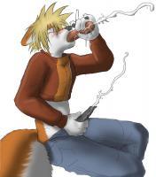 furry smexy fox