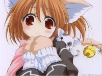 Kitty Cat =3